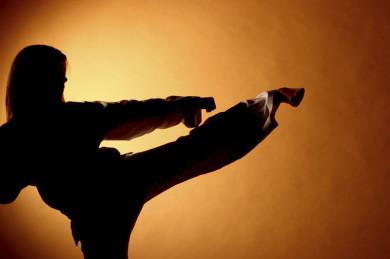 Asia Fitness Program, Budo-Fitness, Sportschule Helmut Eberle, Taekwondo, Hanmudo, Hapmusul, Hapkido, Allkampf, Augsburg, Bayern, Deutschland